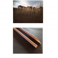 REED PLASTIC PROFILE  2,8 METERS